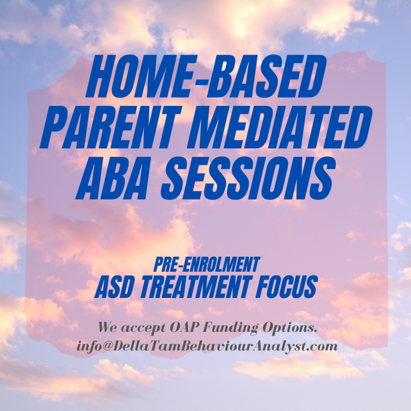Home-based Parent Mediated ABA Sessions
